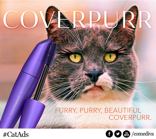 catads_coverpurr