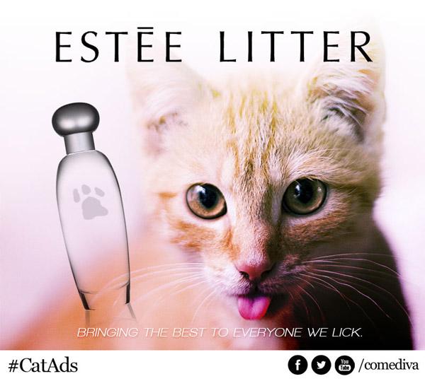 catads_esteelitter